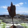 A Readymade sculpture I found on the beach. Actually the rusted metal from the prow of a rowing boat. I still have it!